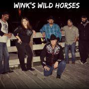 Wink's Wild Horses
