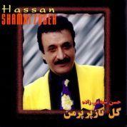 Hassan Shamai Zadeh